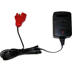 12 volt charger for feber ectric car